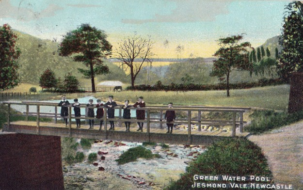 Green Water Pool, Jesmond Vale. Postcard published by Alexander Denholm Brash