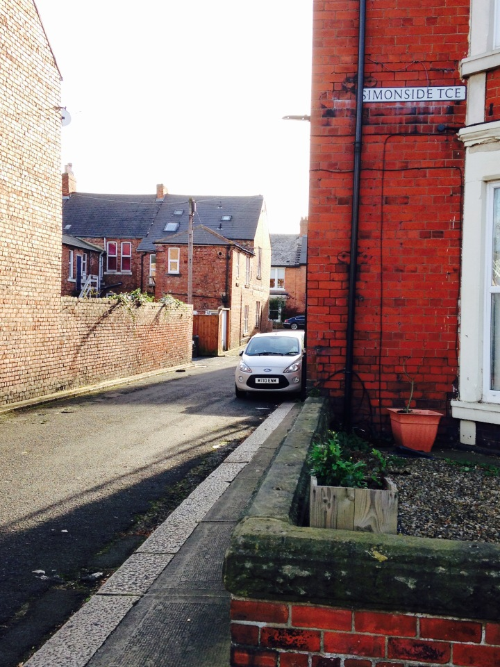 Back lane between Simonside and Rothbury Terrace, November 2015